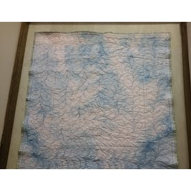 First Feathers - Beginner Free Motion Machine Quilting