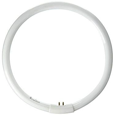 Daylight 28w Circular Tube